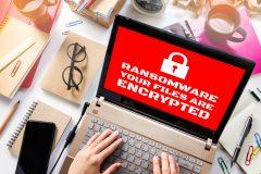 El mejor anti malware son tus empleados (descubre porqué)