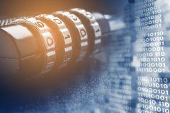 Cómo hacer para que tus datos lleguen a buen puerto: VPN
