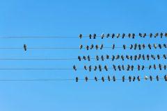Azure Stack: la revolución del cloud híbrido