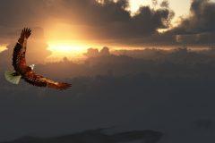 ERP en la nube: ¿cuáles son las 4 soluciones más potentes?